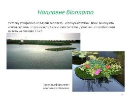 Image00038