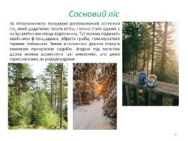 Image00045